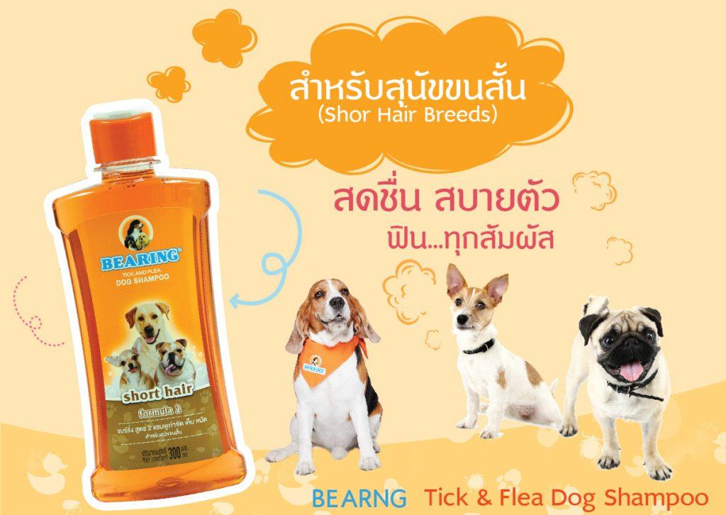 Bearing แชมพูกำจัดเห็บหมัด สำหรับสุนัขพันธุ์ ขนสั้น