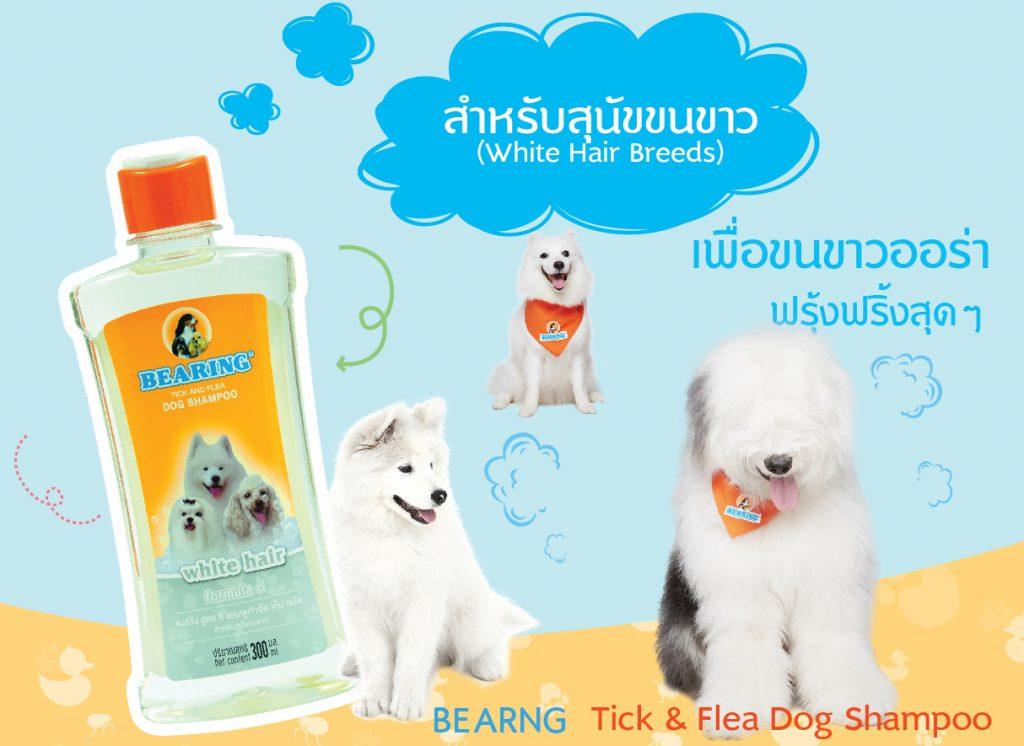 Bearing แชมพูกำจัดเห็บหมัด สำหรับสุนัขขนสีขาว