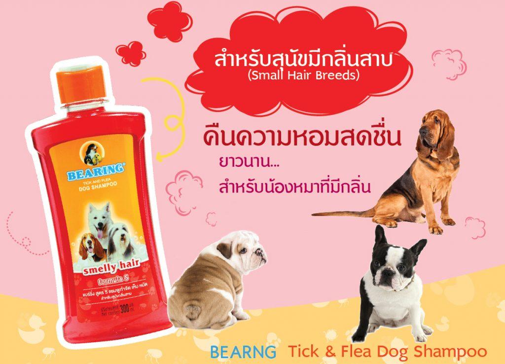 Bearing แชมพูกำจัดเห็บหมัด สำหรับสุนัข มีกลิ่นสาบ
