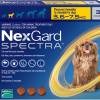 NexGard Spectra สุนัข 3.6-7.5 กก ยากินกำจัดเห็บหมัด กันพยาธิหัวใจ ถ่ายพยาธิลำไส้