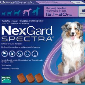 NexGard Spectra สุนัข 15.1-30 กก ยากินกำจัดเห็บหมัด กันพยาธิหัวใจ ถ่ายพยาธิลำไส้
