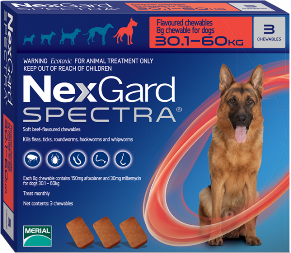 NexGard Spectra สุนัข 30.1-60 กก ยากินกำจัดเห็บหมัด กันพยาธิหัวใจ ถ่ายพยาธิลำไส้