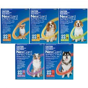 NexGard Spectra สุนัข ยากินกำจัดเห็บหมัด กันพยาธิหัวใจ ถ่ายพยาธิลำไส้